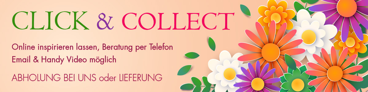 klick&collect header